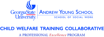 The Professional Excellence Program